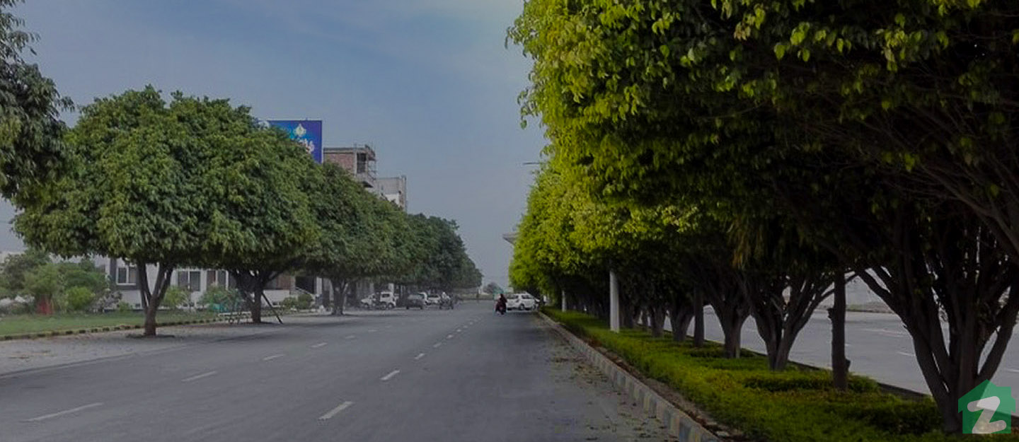 Beautiful road in pakistan with trees on both sides