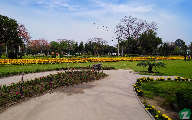 Millat Road Faisalabad Jinnah Gardens