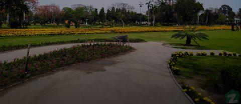Shahzad Colony Faisalabad