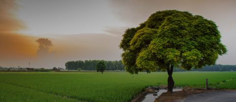 Arifwala Road Sahiwal